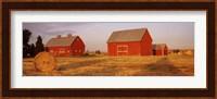 Red barns in a farm, Palouse, Whitman County, Washington State, USA Fine Art Print