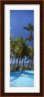 Palm Trees in Maui, Hawaii (vertical) Fine Art Print