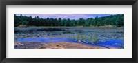 Pond in a national park, Bubble Pond, Acadia National Park, Mount Desert Island, Hancock County, Maine, USA Fine Art Print