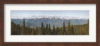 Mountain range, Olympic Mountains, Hurricane Ridge, Olympic National Park, Washington State, USA Fine Art Print