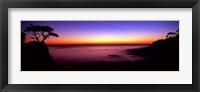Silhouette of Lone Cypress Tree on a cliff, 17-Mile Drive, Pebble Beach, Carmel, Monterey County, California, USA Fine Art Print