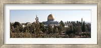 Trees with mosque in the background, Dome Of the Rock, Temple Mount, Jerusalem, Israel Fine Art Print
