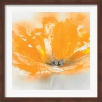 Wild Orange Sherbet I Fine Art Print