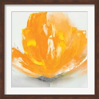 Wild Orange Sherbet II Fine Art Print