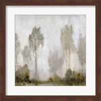 Misty Marsh I Fine Art Print