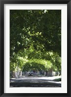 Car on a country road, Lujan De Cuyo, Mendoza Province, Argentina Fine Art Print