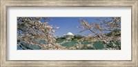 Cherry blossom with memorial in the background, Jefferson Memorial, Tidal Basin, Washington DC, USA Fine Art Print