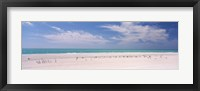 Flock of seagulls on the beach, Lido Beach, St. Armands Key, Sarasota Bay, Florida, USA Fine Art Print