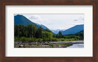 Trees in front of mountains in Quinault Rainforest, Olympic National Park, Washington State, USA Fine Art Print