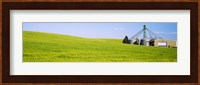 Wheat field with silos in the background, Palouse County, Washington State Fine Art Print