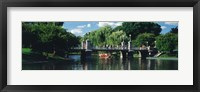 Swan boat in the pond at Boston Public Garden, Boston, Massachusetts, USA Fine Art Print