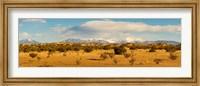 High desert plains landscape with snowcapped Sangre de Cristo Mountains in the background, New Mexico Fine Art Print