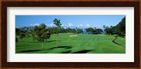 Trees , Kaanapali Golf Course, Maui, Hawaii, USA Fine Art Print
