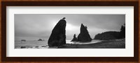 Silhouette of seastacks at sunset, Olympic National Park, Washington State (black and white) Fine Art Print