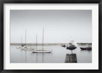 Four Boats & Seagull Fine Art Print
