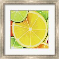 Sliced Lemon Fine Art Print