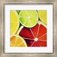 Sliced Grapefruit Fine Art Print