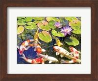 Koi Pond III Fine Art Print