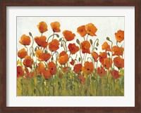 Rows of Poppies I Fine Art Print