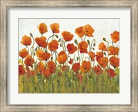 Rows of Poppies I Fine Art Print