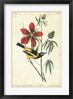 Audubon Bird & Botanical I Fine Art Print