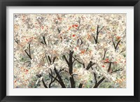 Pear Blossoms in Spring Fine Art Print