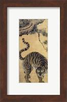Tiger Under the Pine Tree Fine Art Print
