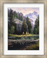 Cure of the Rockies Fine Art Print