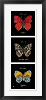 Primary Butterfly Panel I Fine Art Print