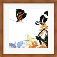 Butterfly Inflorescence IV Fine Art Print