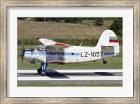 An Antonov An-2 taking off from Primorsko Airport, Bulgaria Fine Art Print
