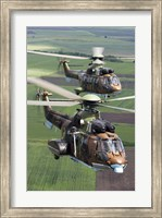 Pair of Bulgarian Air Force Eurocopter AS532 AL Cougar helicopters Fine Art Print