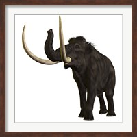 Woolly Mammoth Fine Art Print