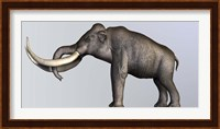 Profile view of Columbian Mammoth Fine Art Print