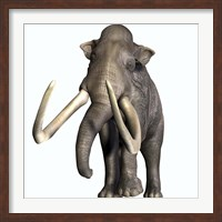 Columbian Mammoth Fine Art Print
