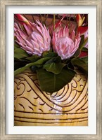 Queen Protea and Heliconia, Umhlanga Rocks, Durban, Kwazulu Natal, South Africa Fine Art Print