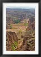Shepard, Yellow Valley cliff, Taigu, Shanxi, China Fine Art Print