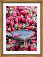 Strawberries for sale in Fes medina, Morocco Fine Art Print