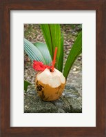 Tropical cocktail drink on Fregate Island, Seychelles Fine Art Print