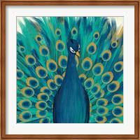 Proud as a Peacock I Fine Art Print