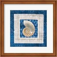 Sea Shell II on Blue Fine Art Print