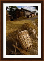 Bai Minority Laying Wheat on the Road, Jianchuan County, Yunnan Province, China Fine Art Print