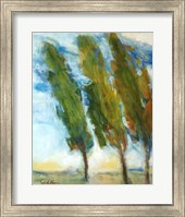 The Three Trees Fine Art Print