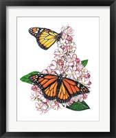 Monarch Butterfly-II Fine Art Print