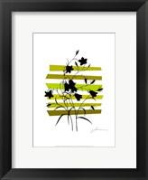 Color Shade VI Fine Art Print