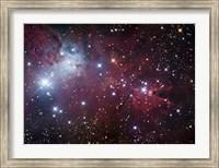 The Cone Nebula Region Fine Art Print