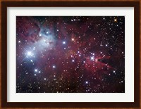 The Cone Nebula Region Fine Art Print