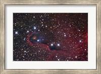 The Elephant Trunk Nebula Fine Art Print