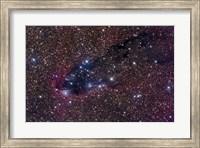 The Dark Tower, Cometary Globule in Scorpius Fine Art Print