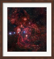 The Lobster Nebula in Scorpius Fine Art Print